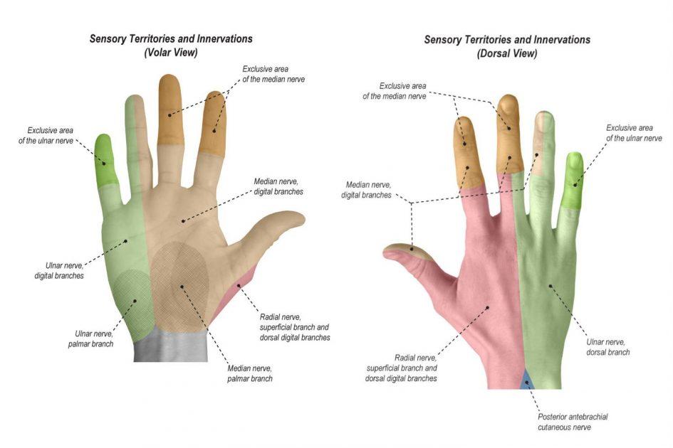 Cervikobrahijalni sindrom simptomi